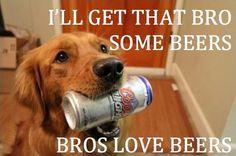 funny-animal-captions-002-006.jpg (648×430)