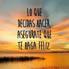 Siempre, busca la felicidad!