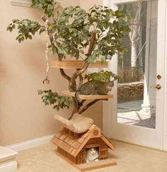 homemade pet furniture | cat house plastic cat houses plastic cat house pet houses for cats pet ...