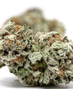 Buy kush , vape and weed related products online Buy Edibles Online, Buy Cannabis Online, Buy Weed Online, Weed Strains, Indica Strains, Weed California, Weed Buds, Farm Online, Weed Shop