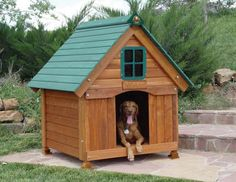 dog house | View Source | More Cedar Dog House Eco Friendly Home Furniture Design ...