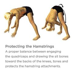 Healing (or Preventing) Hamstring Injuries Hamstring Yoga, Hamstring Pull, Hamstring Muscles, Killer Workouts, Fun Workouts, Fitness Nutrition, Yoga Fitness, Fitness Quotes, Fitness Tips