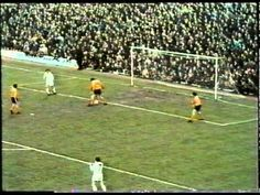 After a draw in the First Leg of their UEFA Cup Semi-final against Hungarian side Ferencvaros, Wolves were back at Molineux two weeks later for the retur. Semi Final, Video Footage, Wolves, Finals, First Love, Football, Futbol, First Crush, American Football