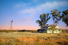 Australian Homestead shaded by Gum Trees while the iconic Windmill pumps water.