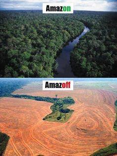 คุณจะเลือกให้ป่าเป็นแบบภาพไหน? ในเมื่อคุณเป็นหนึ่งในหมู่มวลมนุษย์ที่สามารถกำหนดอนาคตของโลกใบนี้ได้...