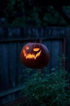 Samhain // Hallowe'en // Day of the Dead Halloween Prop, Halloween Jack, Halloween 2019, Halloween Night, Spirit Halloween, Holidays Halloween, Vintage Halloween, Halloween Pumpkins, Halloween Crafts