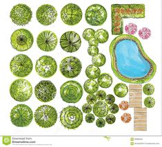 Set Of Treetop Symbols, For Architectural Or Landscape Design - Download From…