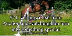 Competing in your first Grand Prix on a horse you grew up with. #horse #equestrian