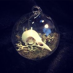 Magpie Skull Christmas Tree Bauble by DeadPrettyTaxidermy on Etsy