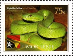 Country: East Timor Series: International Year of Biodiversity Catalog codes: Michel TL 385 Themes: Animals (Fauna) Timor Leste, Viper, Brunei, Southeast Asia, Cambodia, Offset, Laos, Philippines, Singapore