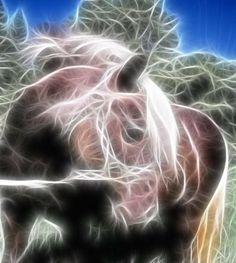 cheval fractale