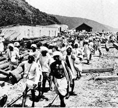 Britain sent indentured labourers from India to South Africa. Like all non-whites, subject to racist laws. Political Culture, East Indies, Kwazulu Natal, Out Of Africa, African History, Present Day, Southeast Asia, Old Photos, Landscape Photography