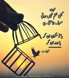 Love Quotes In Urdu, Sufi Quotes, Urdu Quotes, Poetry Quotes, Best Quotes, Qoutes, Letter Designs, Quotes From Novels, Heart Touching Shayari