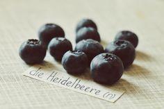 die Heidelbeere - blueberry