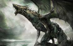 dragon  | Angenommen