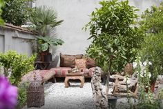 Moroccan backyard garden