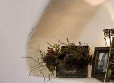 ヒッキーウォール塗り壁で厚みをつけ、わざと凹凸のある仕上げ。 #ヒッキーウォール #塗り壁 #カントリーベース #舶来土建 Terrarium, Plants, Home Decor, Terrariums, Decoration Home, Room Decor, Plant, Home Interior Design, Planets