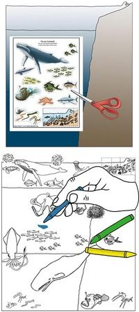Learn about Animals and Habitats with simple, fun activities from Exploringnature.org Black And White Posters, Scotch Tape, Poster Colour, Biomes, One Color, Fun Activities, Colored Pencils, Habitats, Coloring Pages