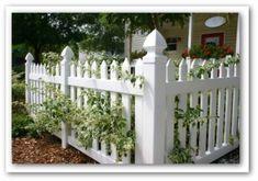 vegetable-garden-fencing-02.jpg (336×236)