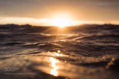 Untitled by emydossett #nature #photooftheday #amazing #picoftheday #sea #underwater