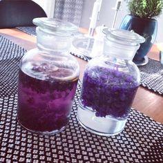 recept på violsaft och viollilökör gjorda på våren godaste blomma