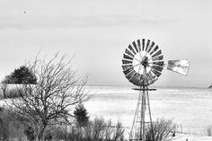 The prairie in winte