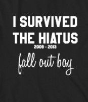 I Survived the Fall Out Boy Hiatus