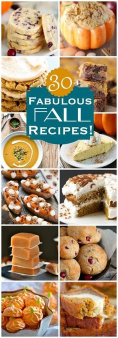More than 30 FABULOUS FALL RECIPES to keep your tummy happy this season! Desserts, dinner, breakfast and more! Lots of great cranberry, pumpkin, and apple recipes right here for you to enjoy! // Mom On Timeout