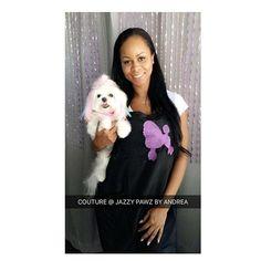 WEBSTA @ jazzypawzbyandrea - ANDREA AND COUTURE 🐶🐾❤️