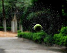 The Perfect Shot…