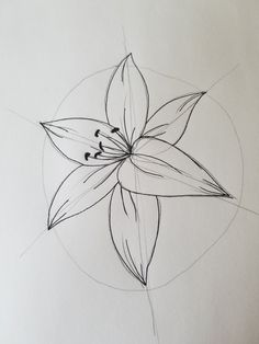 Today's post is going to be walking you through drawing a lily. This is an easy, beginner level drawing that will take minutes and look great! Before we get started I've made a simplified walk through as a printable. You can print this off and keep it as a way to remember the basics for t