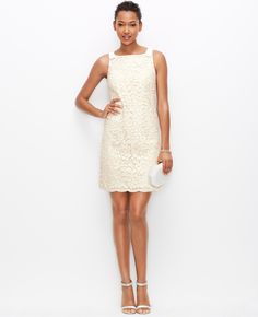 Primary Image of Lace Boatneck Dress