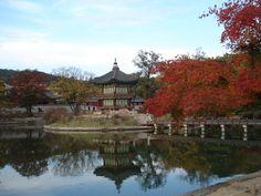 Autumn in Korea.