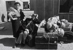 Robert Capa, Immigrants, Israel, 1950