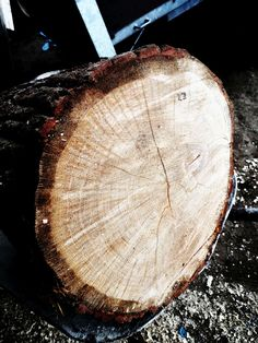 O nás | SPALKY.store Firewood, Texture, Store, Crafts, Surface Finish, Woodburning, Manualidades, Larger, Handmade Crafts