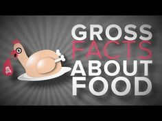 Gross Facts About Food: Use to inspire thoughtful response in Writer's Notebook