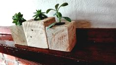 Simple planter from pallet blocks 🌱🌿