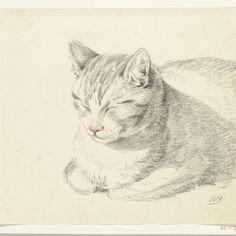 Liggende kat, schuin van voren, Jean Bernard, 1808 - Rijksmuseum
