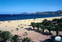 Appartement Location de vacances à Argelès sur Mer  Pyrénées Orientales  Languedoc Roussillon  France N°annonce59627