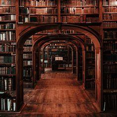 New Dark Wood Shelves Bookshelves Ideas Different Aesthetics, Slytherin Aesthetic, Brown Aesthetic, Hogwarts Houses, Hogwarts Library, Dark Wood, Architecture, Aesthetic Pictures, Light In The Dark