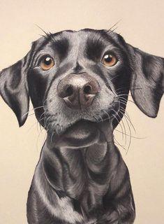 Realistic Animal Drawings, Cool Art Drawings, Amazing Drawings, Colorful Drawings, Drawing Faces, Dog Pencil Drawing, Girl Drawing Sketches, Pencil Art Drawings, Drawing Tips