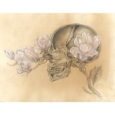 Limited Edition HUMAN NATURE Poster Anatomy Series Number 1 11x14... ($34) ❤ liked on Polyvore featuring home, home decor, wall art, magnolia home decor, skull home decor, watercolor poster, skull wall art and signed poster