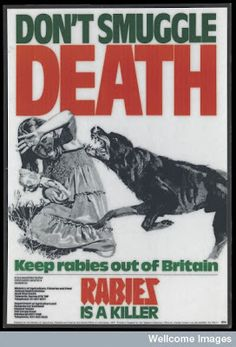 Rabies - every child's greatest fear in the 1970s (that and having your arm broken by a swan). Poster via Wellcome Library Collection.  Seventies