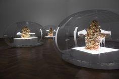 AY_Digital Spit Anicka Yi 7,070,430K of Digital Spit, Kunsthalle Basel, Basel, 2015 Photography Philipp Hänger, courtesy 47 Canal, New York, and Kunsthalle Basel, Basel