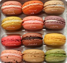 Macarons - Patisserie Sadaharu Aoki