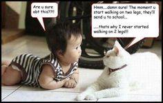 Funny kid Cartoon Jokes | funny jokes 1 kids jokes tags cartoon influence funny images funny ...