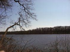 Worster lake in Potato Creek State Park in North Liberty, IN, USA. #hiking #worsterlake #potatocreek #indiana