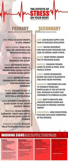 Tense muscles, sweat and pounding heart are some short term effects of stress. Unchecked long term stress can lead to high blood pressure and high cholesterol (Infographic of the Month! The Effects of Stress And Warning Signs, Dealing With Stress, Stress Less, Reduce Stress, Work Stress, Coping With Stress, Health And Beauty, Health And Wellness, Health Tips, Health Fitness