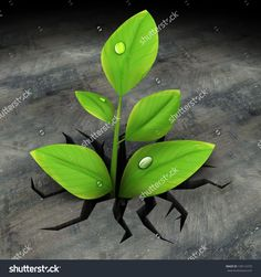 Abstract 3d Illustration Of Green Plant Growing In Asphalt - 130112270…