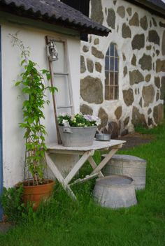 ☷ This would be great next to the chicken house and in between the garden to replant plants.